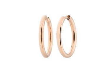 Bron | Lux earrings